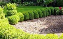 Уборка придомовой территории многоквартирного дома: чья это обязанность, кто отвечает за дворы, что входит в перечень работ дворника