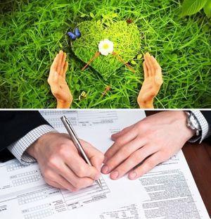 Межевание садового участка ЗОП в СНТ: порядок проведения процесса и документы, как быть с землей общего пользования, расположенной в товариществе?