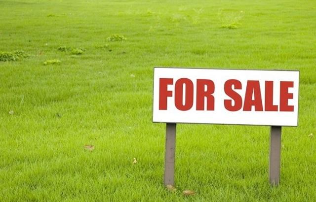 Можно ли продать участок без межевания и как, купить и приватизировать; аренда ЗУ без межевания, как продать часть земельного участка