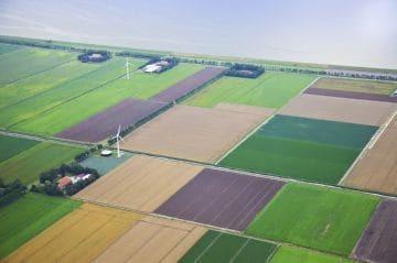 Приватизация дачного участка:  до какого года продлена программа, сколько стоит, нужно ли межевание земли, пример образца заявления