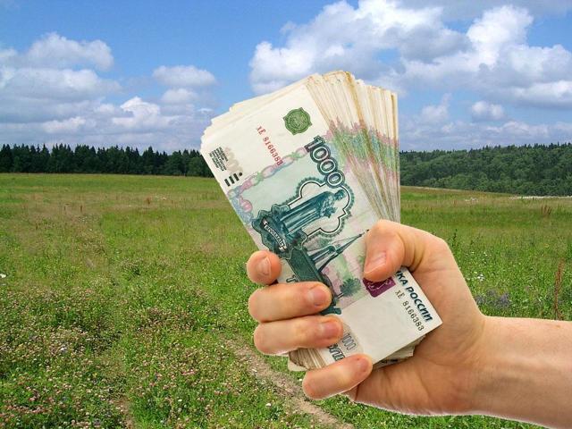 Многодетным семьям вместо земли могут выдавать деньги или квартиру: как получить компенсацию или жилье взамен участка?