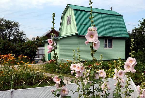Земельный участок многодетным семьям: особенности бесплатного предоставления и выделения надела в собственность, кому положена земля и куда обращаться