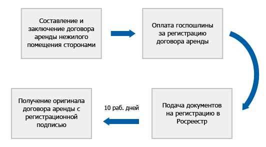 Аренда нежилого помещения между юридическими лицами: образец содержания договора, особенности сдачи между двумя ООО, как регистрировать, продлять и вносить изменения в соглашение