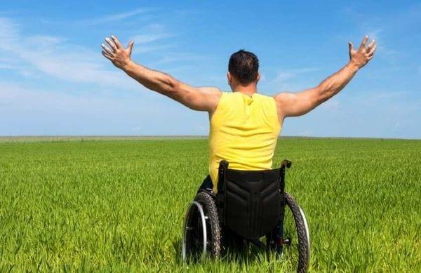 Как бесплатно получить земельный участок инвалиду, в том числе 2 группы: порядок получения и образец заявлении о предоставлении земли