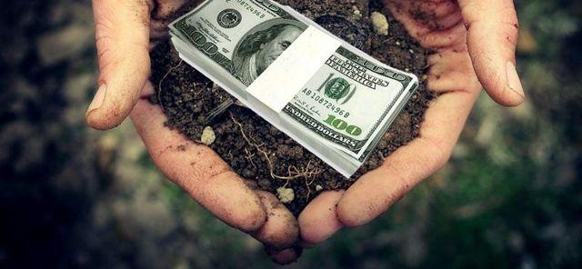 Как взять землю в аренду у государства под бизнес: участки под торговлю, например, магазин или киоск, какие бумаги нужно предоставить в администрацию города