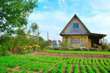Аренда земли у государства с правом выкупа участка: особенности и инструкции