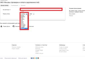 Оплата ЖКХ через Яндекс.Деньги: пошаговая инструкция, плюсы и минусы этого способа, а также можно ли сделать перевод за услуги без комиссии?