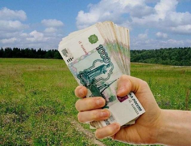 Как продать землю для многодетных семей: можно ли оформить собственность на данный участок, условия продажи полученного имущества
