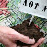 Как взять землю в аренду у администрации сельского поселения: что нужно, чтобы получить участок хозназначения у государства?